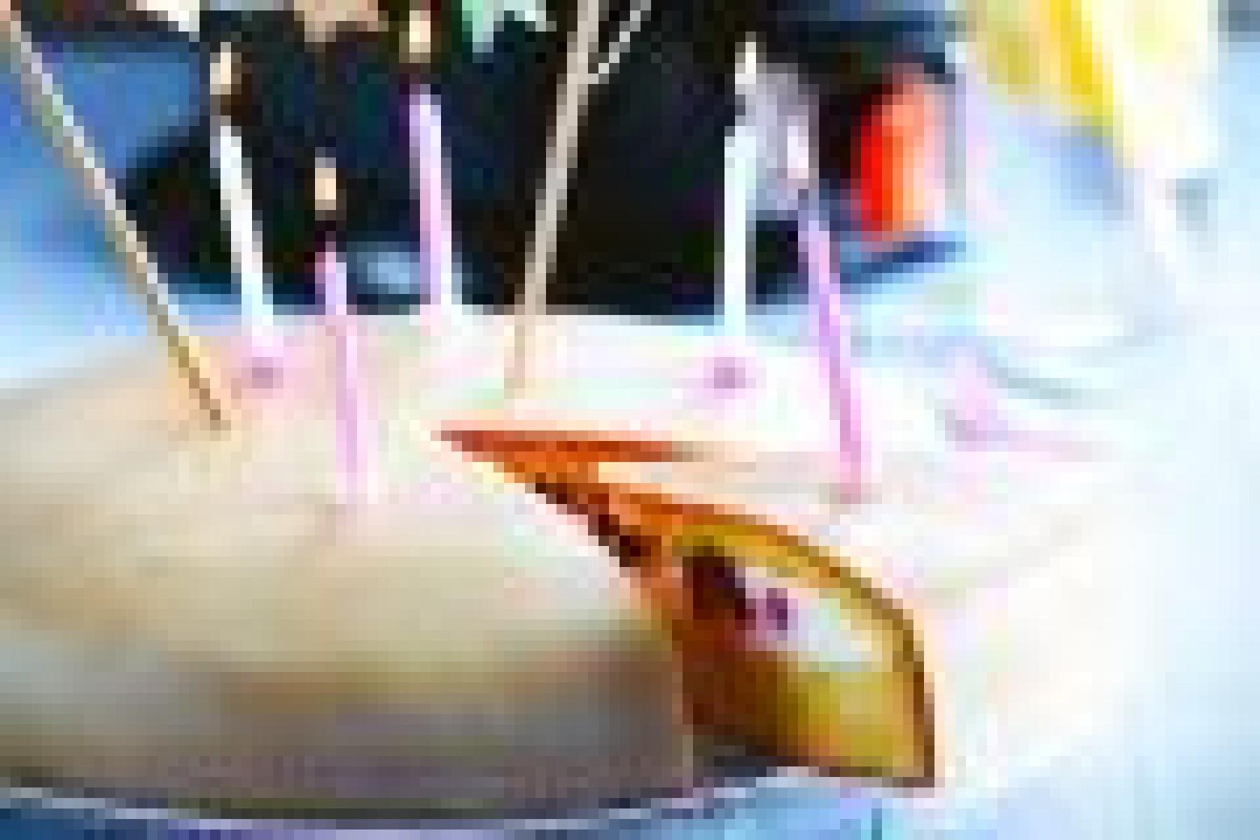 Gâteau framboise-pâte d'amande