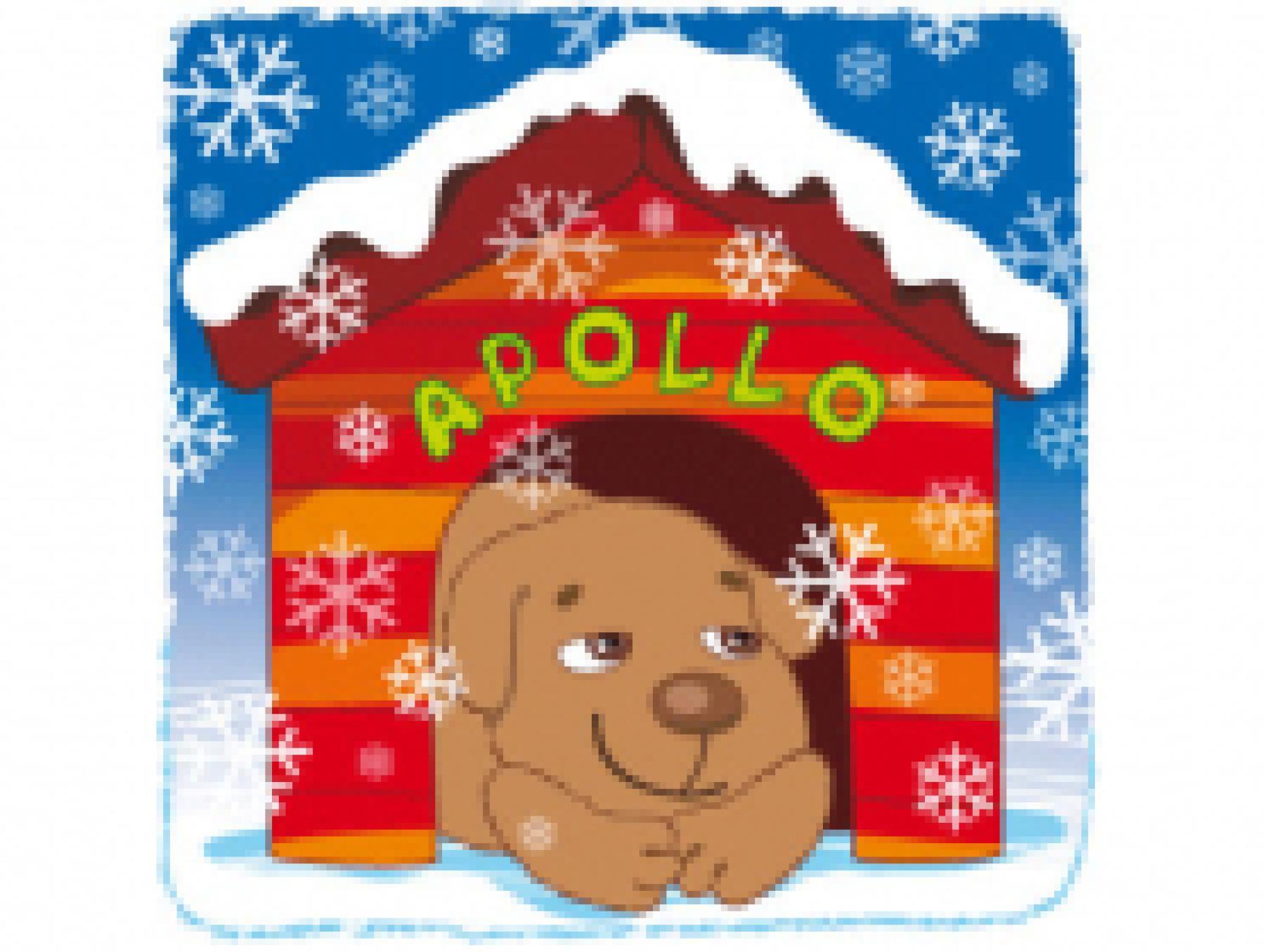 Le Noël d'Apollo le chiot