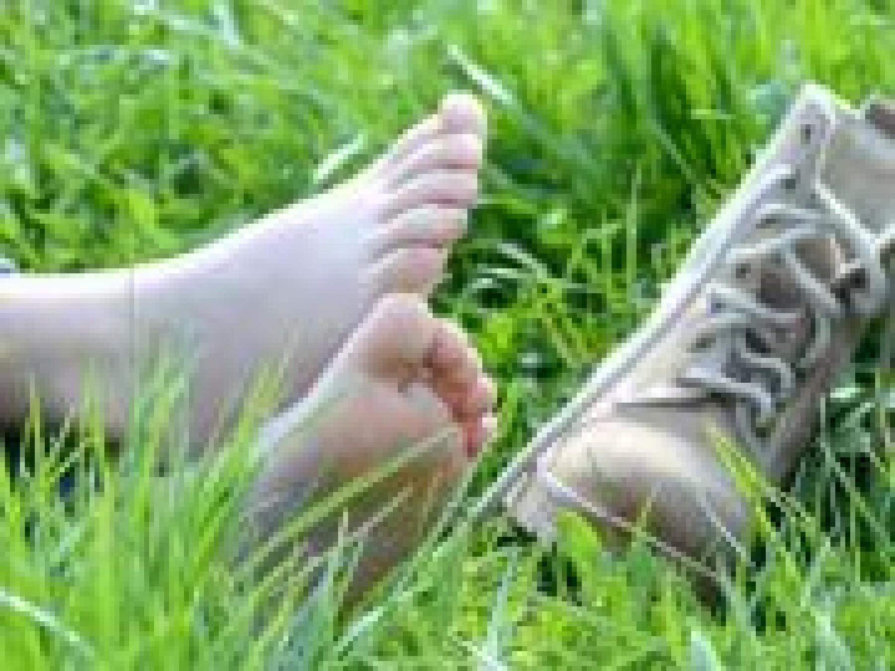 pieds plats