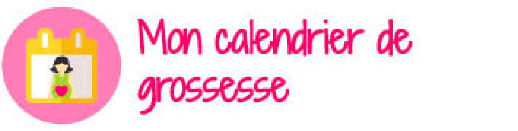 calendrier grossesse
