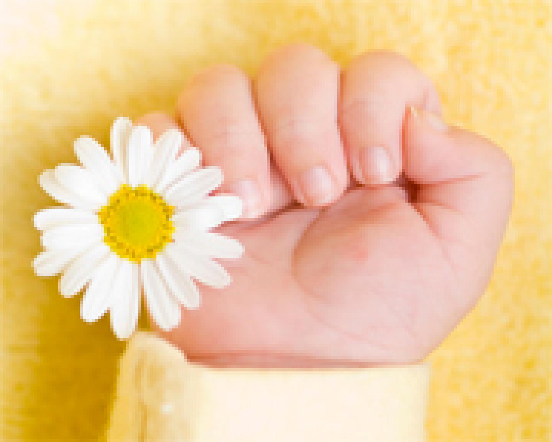 Prénoms fleuris