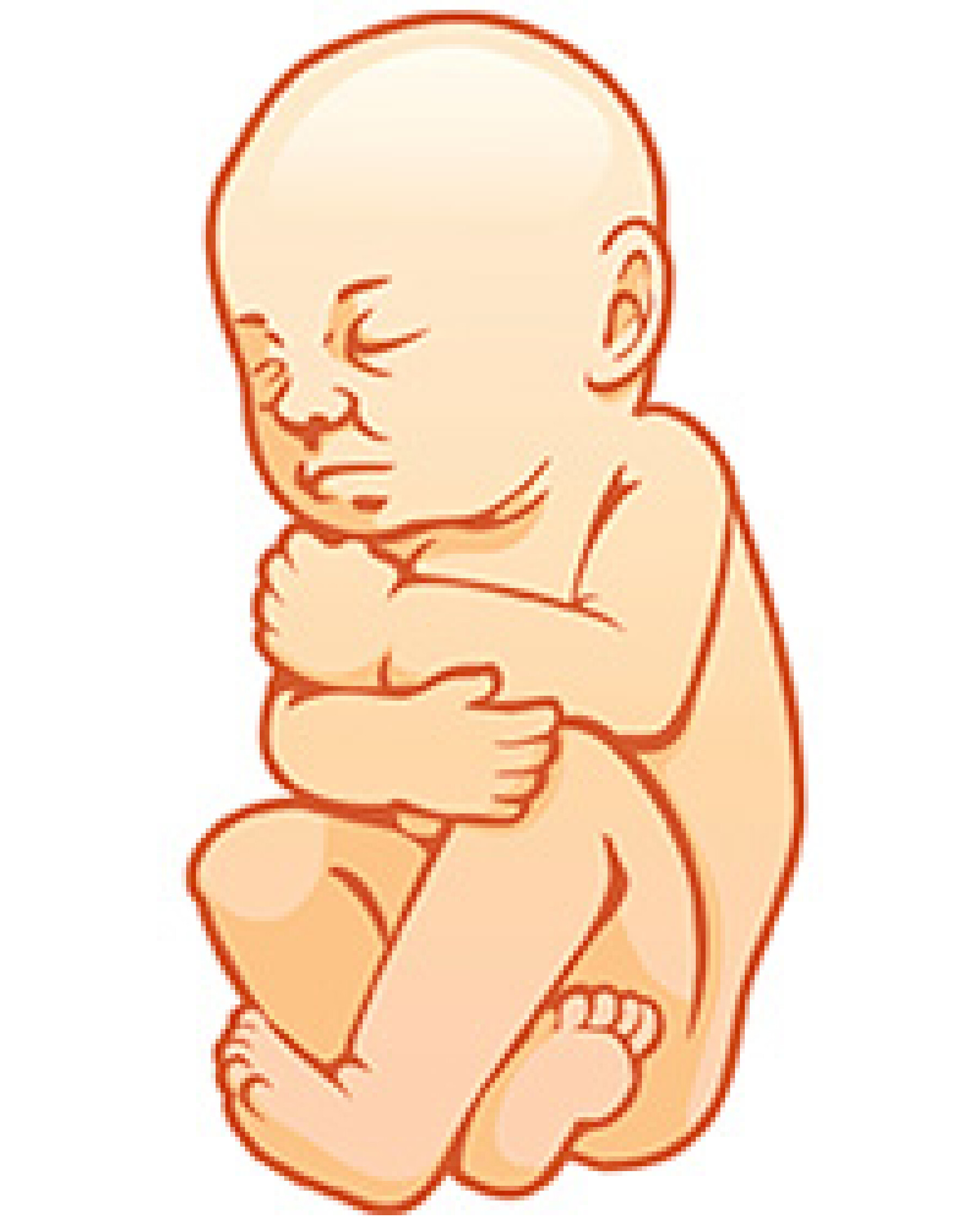 Voyage in utero : le 9e mois